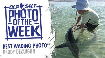 photo of the week contest
