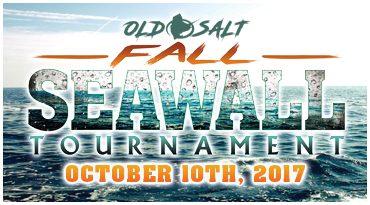 Family Fishing opportunity in Treasure Island Florida