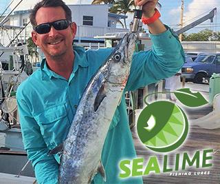 Sea Lime Banner – 1