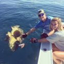 Goliath Grouper: FWC Workshops on regulations