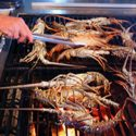 Grill Those Spiny Florida Lobster
