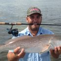 Photo of the Week:  Redfish