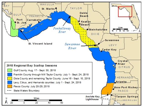 florida bay scallop season map