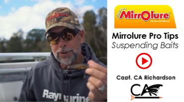 suspending baits instructional video