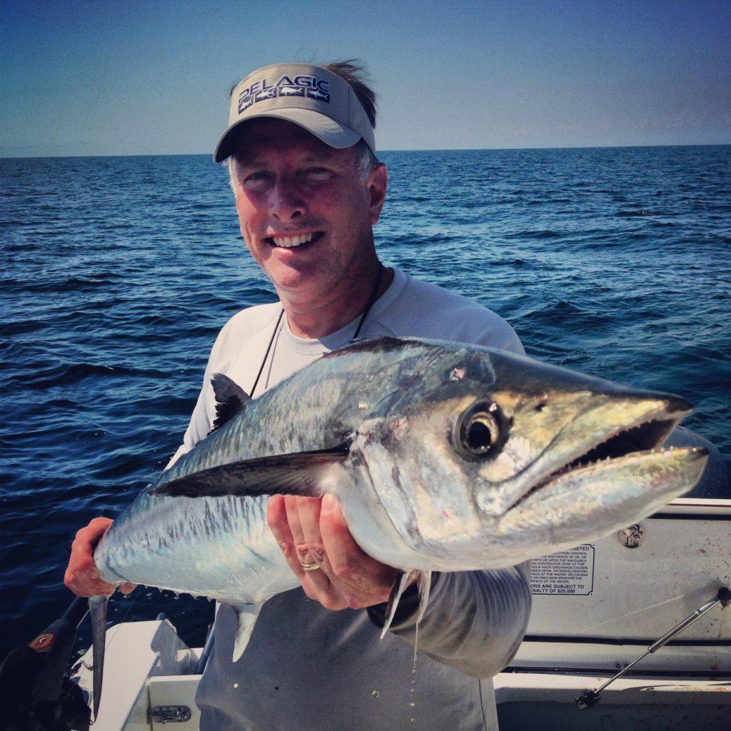 kingfishing in tampa bay