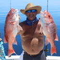 American Red Snapper off the Gulf Coast