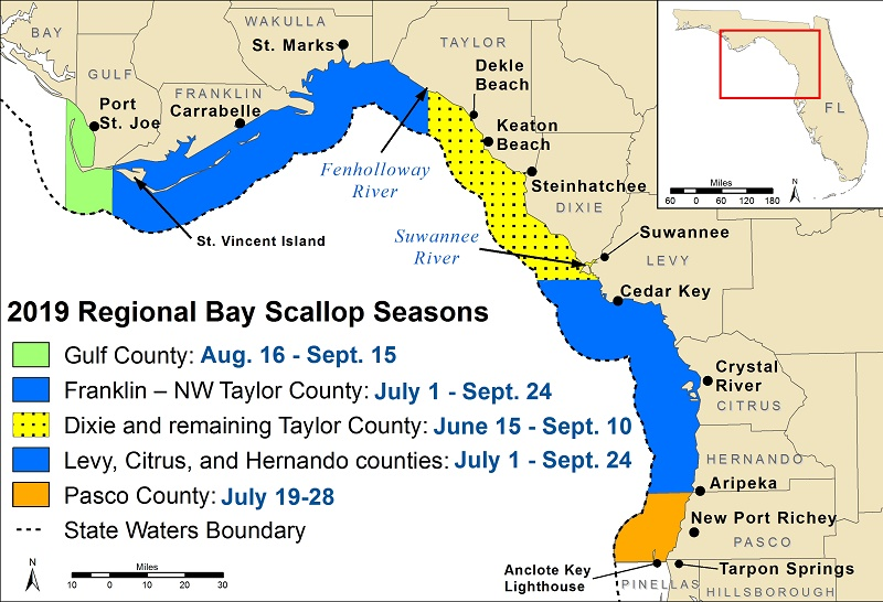 2019 Florida Bay Scallop Seasons Map