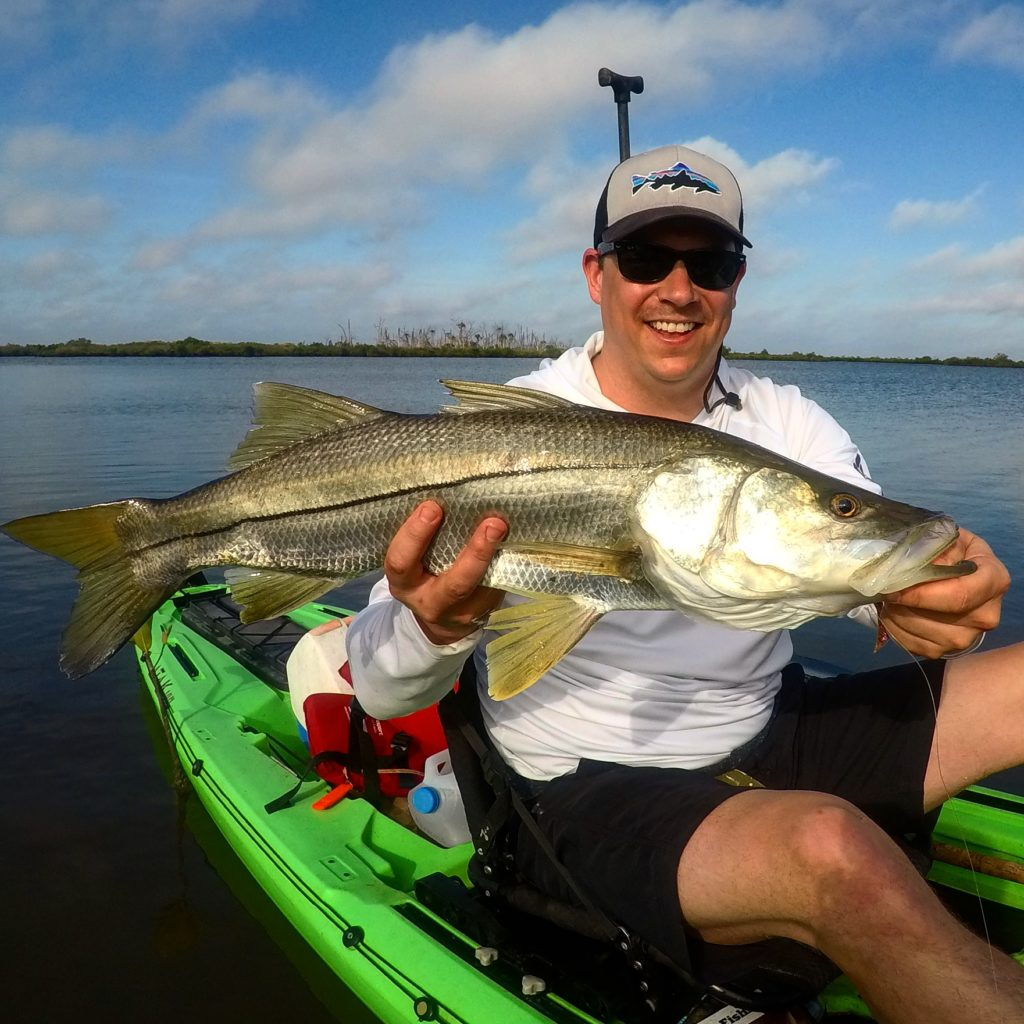 Snook are abundant when nature coast kayak fishing