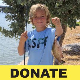make a charitable donation