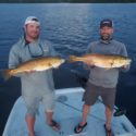 Capt. Travis' Tampa Bay Fishing Report For October 2020