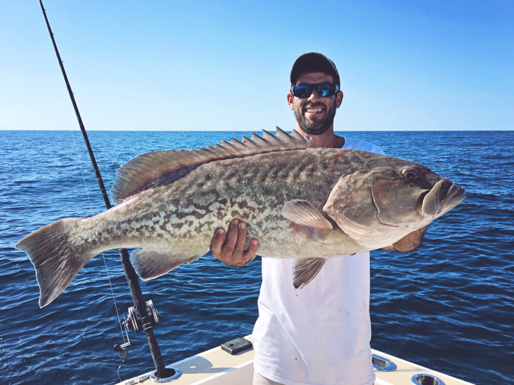 catch big grouper on floridas space coast
