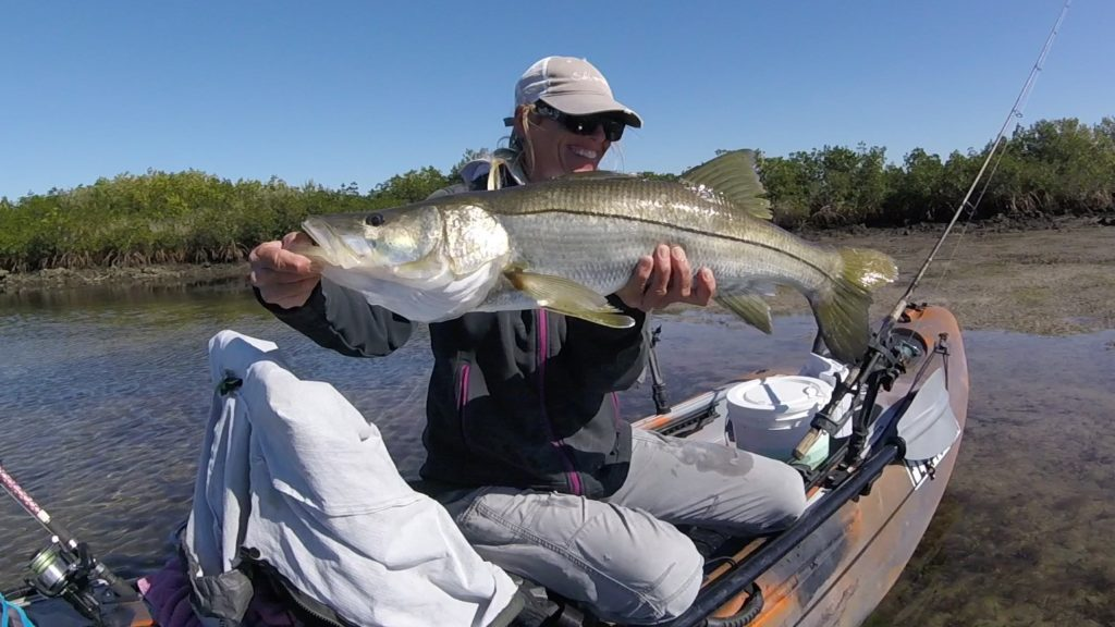 snook fishing on florida's nature coast