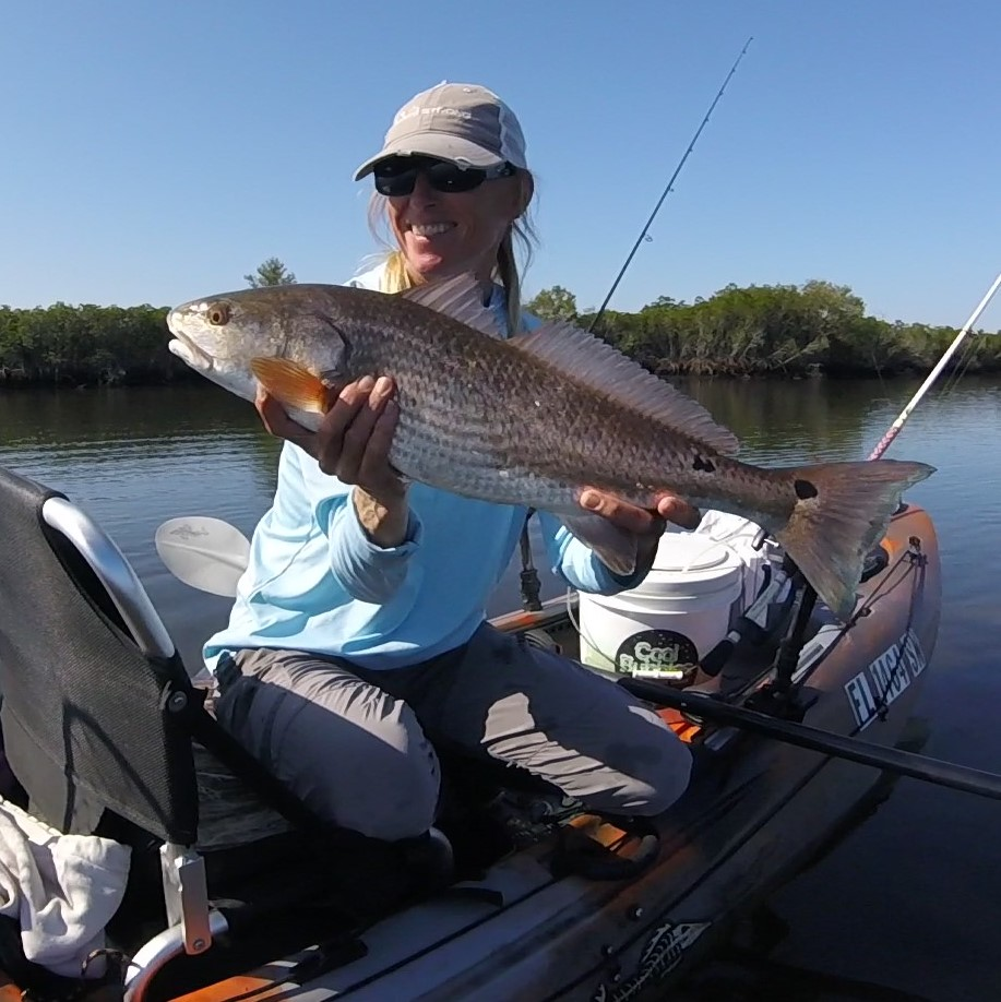 redfish kayak fishing on florida's nature coast